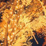 クリスマスイルミネーションの美しいスポット5選