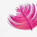 ピンク色は若者だけの色じゃない。年齢別に似合うピンク色をご紹介!